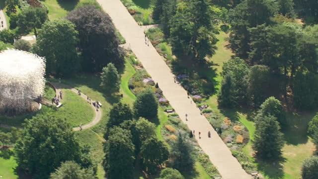 aerial shots of kew gardens on september 13, 2016 in london, england. - キュー点の映像素材/bロール