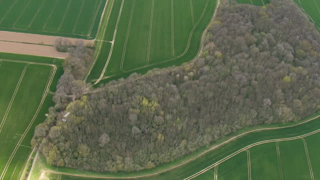 aerial shots of police forensics offcers searching farmland and wooded area for clues to the murder of police community support officer julia james.... - farm stock videos & royalty-free footage