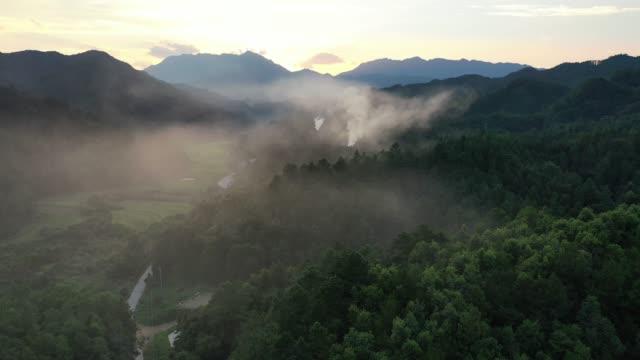 vidéos et rushes de plans aériens de la mer des nuages entre les montagnes et les forêts - colline
