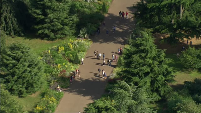aerial shots over kew gardens including glass houses and people walking after the lifting of coronavirus lockdown restrictions on 5 july 2020 in... - キュー点の映像素材/bロール