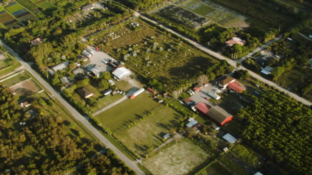 aerial showing agriculture land in western miami dade county from a piper airplane. the institute for regional conservation released a 10-year report... - miami dade county stock videos & royalty-free footage