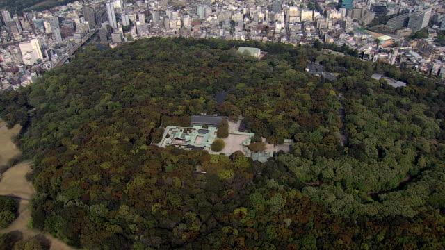 aerial shrine shibuya tokyo emperor meiji religion japan - 天皇点の映像素材/bロール