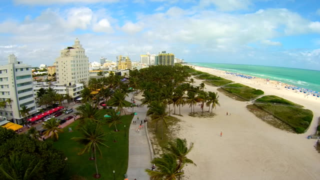 Aerial 'side dolly' view floating low over miami south beach, palm trees and ocean.
