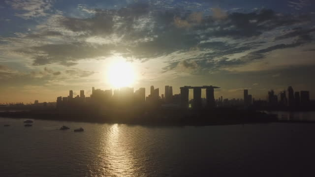 aerial singapore's skyline at dusk - formal garden stock videos & royalty-free footage