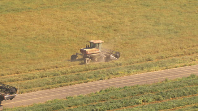 aerial slow motion a tractor combine cuts and rakes alfalfa for hay in a field. - alfalfa hay stock videos & royalty-free footage