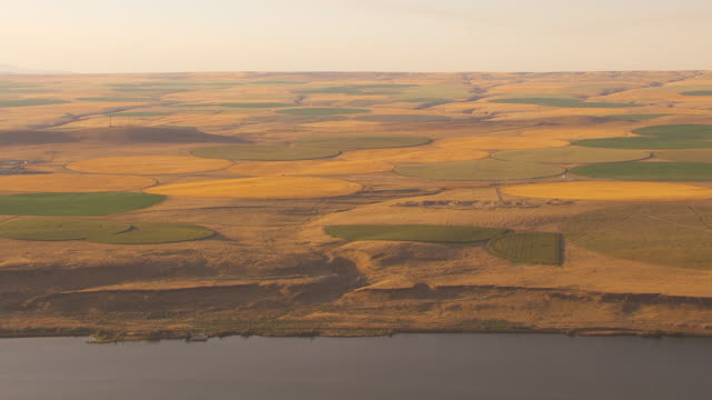 aerial slow motion camera flies along the columbia river featuring green and golden circular farm fields created by center pivot irrigation systems in an otherwise arid landscape. - columbia center stock videos & royalty-free footage