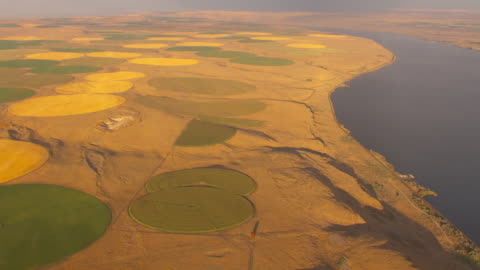 aerial slow motion camera flies over the columbia river featuring green and golden circular farm fields created by center pivot irrigation systems in an otherwise arid landscape. - columbia center stock-videos und b-roll-filmmaterial