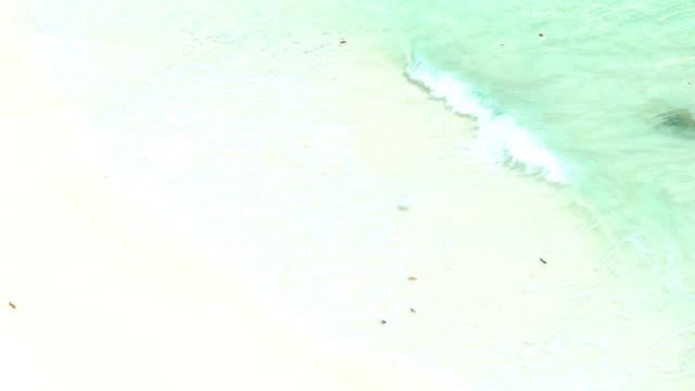 aerial slow motion av ocean wave på vit sand tropical beach i thailand. - andamansjön bildbanksvideor och videomaterial från bakom kulisserna