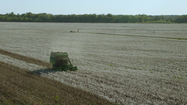 aerial slow motion view of cotton harvester - cotton stock videos and b-roll footage
