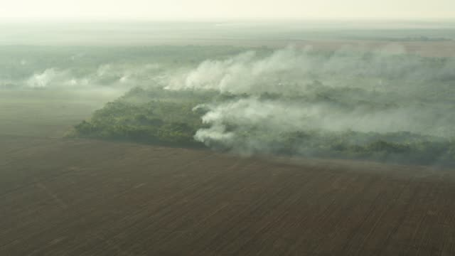 aerial smoke forest fire amazon rainforest - アマゾン熱帯雨林点の映像素材/bロール