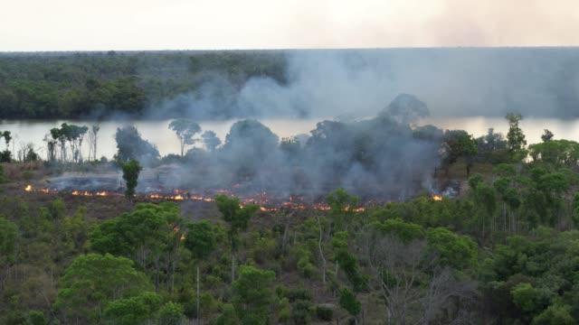 vídeos de stock, filmes e b-roll de aerial smoke forest fire amazon rainforest - questão social