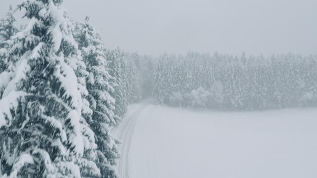 vídeos de stock e filmes b-roll de vista aérea da neve coberta árvores experimentando uma floresta de estrada - nevão