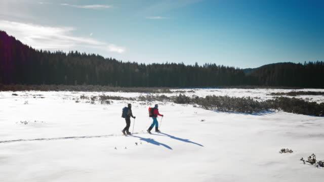 veduta aerea di una camminata con racchette da neve su una mountain valley in giornata di sole - sunny video stock e b–roll