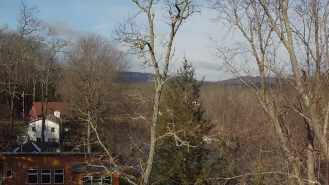 Aerial soaring up over trees to reveal river and hills in New York state