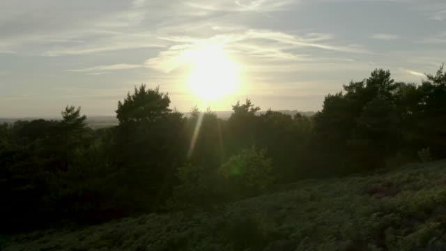 aerial south downs showing chalk grassland and woodland - hügelkette stock-videos und b-roll-filmmaterial