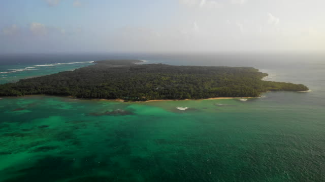 aerial spin left/descend: forest covered island surrounded by vibrant ocean  - little corn island, nicaragua - island stock videos & royalty-free footage