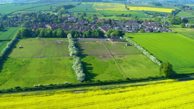 aerial spin of rapeseed oil & other fields, skidby, east riding of yorkshire - annat tema bildbanksvideor och videomaterial från bakom kulisserna