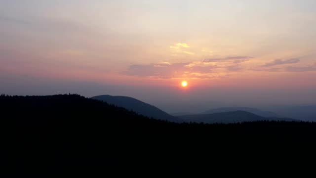 aerial sunrise - pinaceae stock videos & royalty-free footage