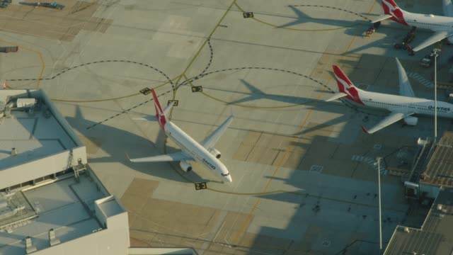 aerial sunrise view qantas aircraft taxiing melbourne airport - air vehicle stock-videos und b-roll-filmmaterial