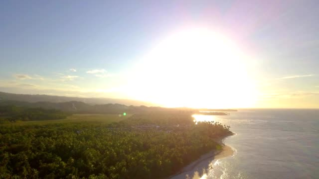 4k aerial sunset in tropical island with palm trees - hispaniola stock videos and b-roll footage