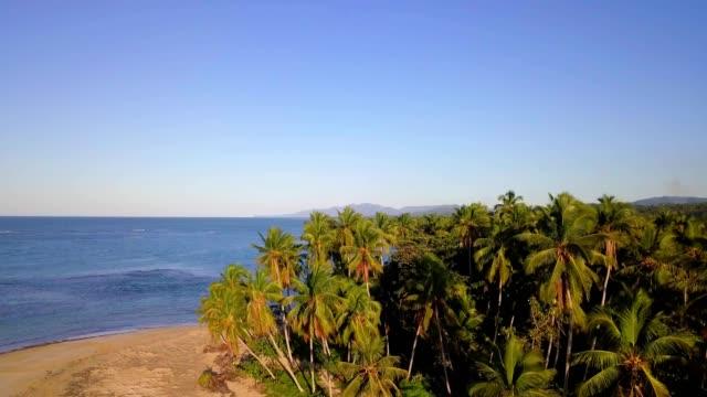 vídeos y material grabado en eventos de stock de 4 k antena puesta del sol en una isla tropical con palmeras - hispaniola