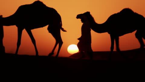 vídeos de stock, filmes e b-roll de aerial sunset of camel train middle eastern desert - qatar