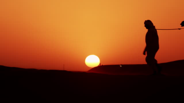 aerial sunset of camel train middle eastern desert - headdress stock videos & royalty-free footage