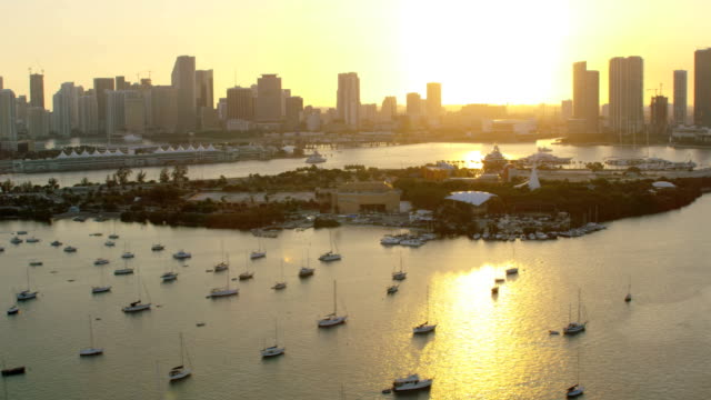 aerial sunset view jungle island macarthur causeway miami - biscayne bay stock-videos und b-roll-filmmaterial