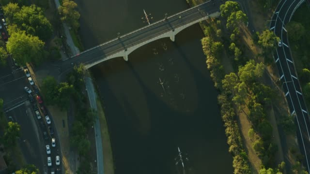 aerial sunset view rowing boats yarra river melbourne - crew stock videos & royalty-free footage