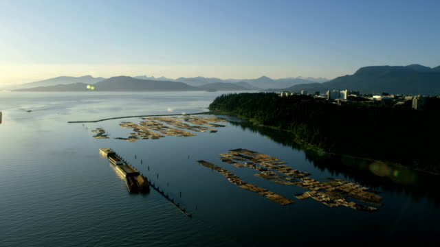 aerial sunset wreck beach vancouver british columbia canada - boom barrier stock videos & royalty-free footage