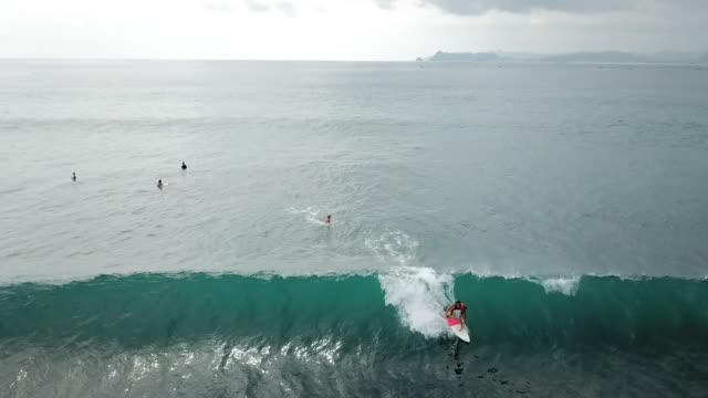 aerial: surfer catches a wave in lombok, bali - fangen stock-videos und b-roll-filmmaterial