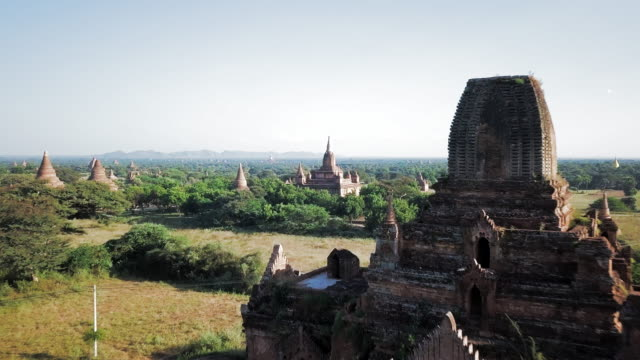 aerial: temples in old bagan separated by trees - bagan stock videos & royalty-free footage