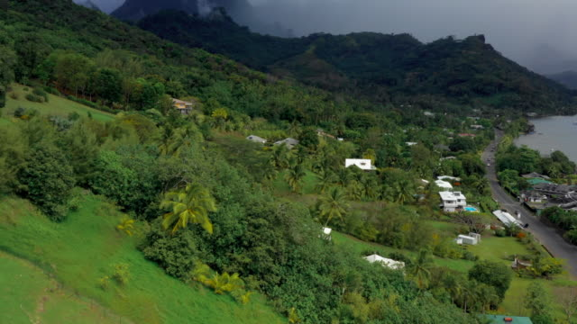 aerial: the hillside and mountains on moorea island, moorea, french polynesia - insel moorea stock-videos und b-roll-filmmaterial