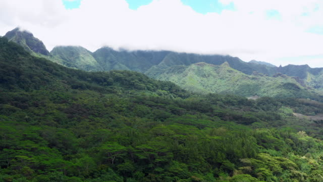 aerial: the lush terrain of a tropical island, moorea, french polynesia - insel moorea stock-videos und b-roll-filmmaterial