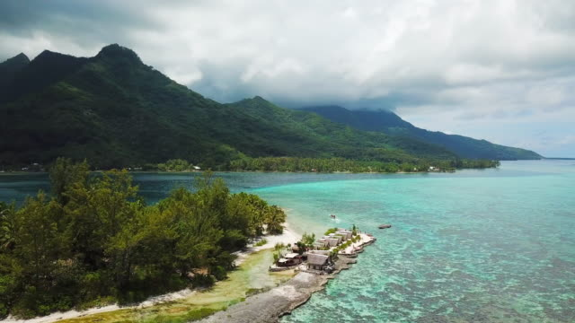 aerial: the tropical ocean below the lush island of moorea in the french polynesia - moorea stock videos & royalty-free footage