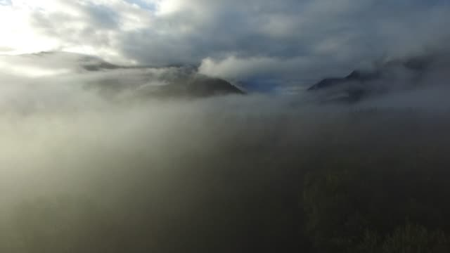 vídeos y material grabado en eventos de stock de aerial: thick fog covering forest, thick clouds over mountains - pegajoso
