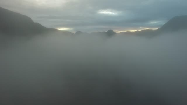 aerial: thick fog over lake and forest on cloudy day - thick stock videos & royalty-free footage