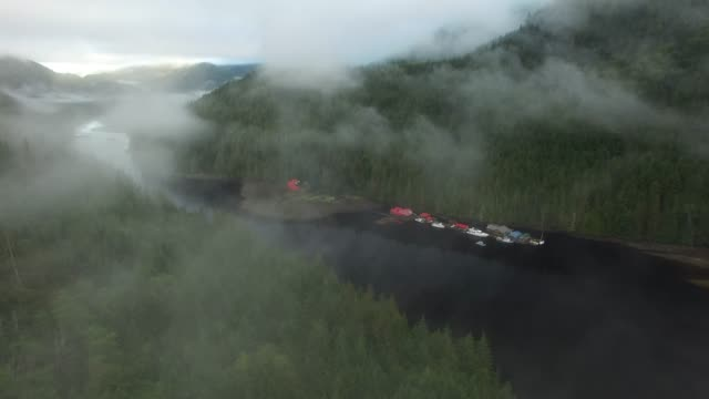 aerial: thin fog covering river and forest during day - thick stock videos & royalty-free footage