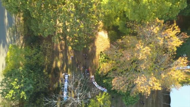 aerial through trees in front yard - sunbathing stock videos & royalty-free footage