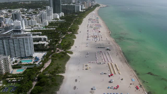 stockvideo's en b-roll-footage met aerial tilt down shot of beach by buildings in city against sky, drone flying forward over plants and trees on sunny day - miami, florida - sunny