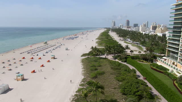 aerial tilt down shot of beach with plants and palm trees against sky, drone flying forward over coastline by buildings in city on sunny day - miami, florida - sunny点の映像素材/bロール