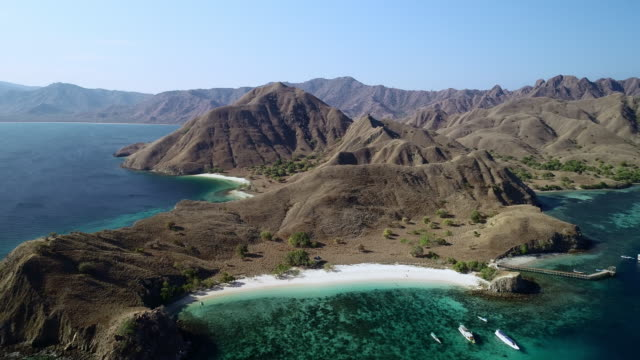 vídeos de stock e filmes b-roll de aerial tilt downward: captivating beach of komodo island in indonesia - indonesia
