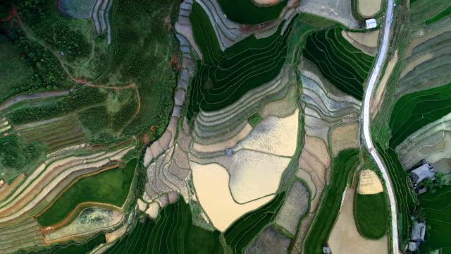 aerial tilt downward rise: vast area of the rice terraces in vietnam - vietnam video stock e b–roll