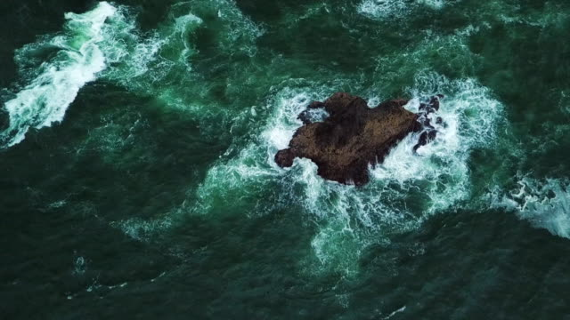 aerial tilt up: bird soaring across the wavy waters of cannon beach oregon - cannon stock videos & royalty-free footage