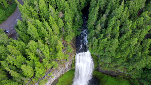 aerial tilt up shot of beautiful waterfall from cliff in forest, drone flying backward over cascade - salt creek falls, oregon - tilt up stock videos & royalty-free footage