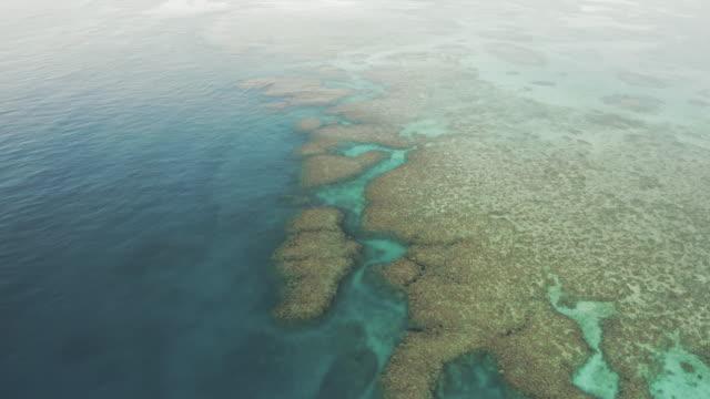 vidéos et rushes de aerial tilt up shot of coral reef in blue ocean on sunny day, drone flying forward over sea - great barrier reef, australia - site classé au patrimoine mondial de l'unesco