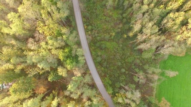 Antenne: kleine Straße im Bayerischen Wald im Herbst