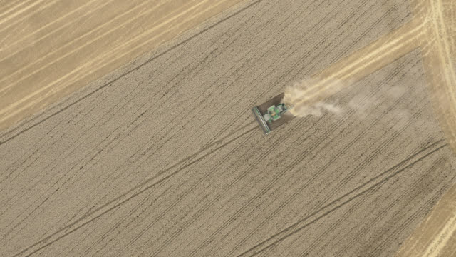 aerial tl combine harvester harvests wheat, uk - agricultural machinery stock videos & royalty-free footage