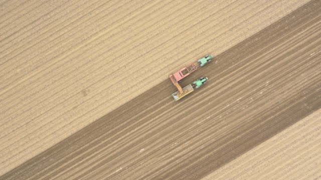 aerial tl machinery harvests potato crop, uk - cultivated stock videos & royalty-free footage