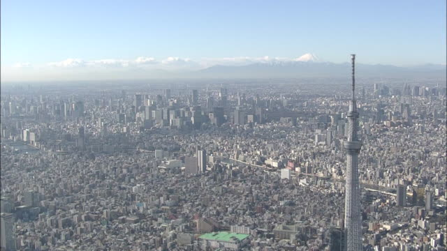 Aerial Tokyo Cityscape